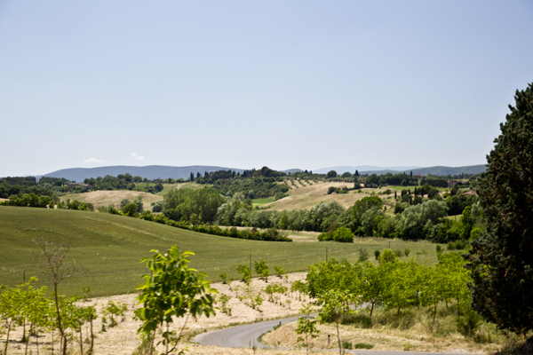 Views of Tuscany