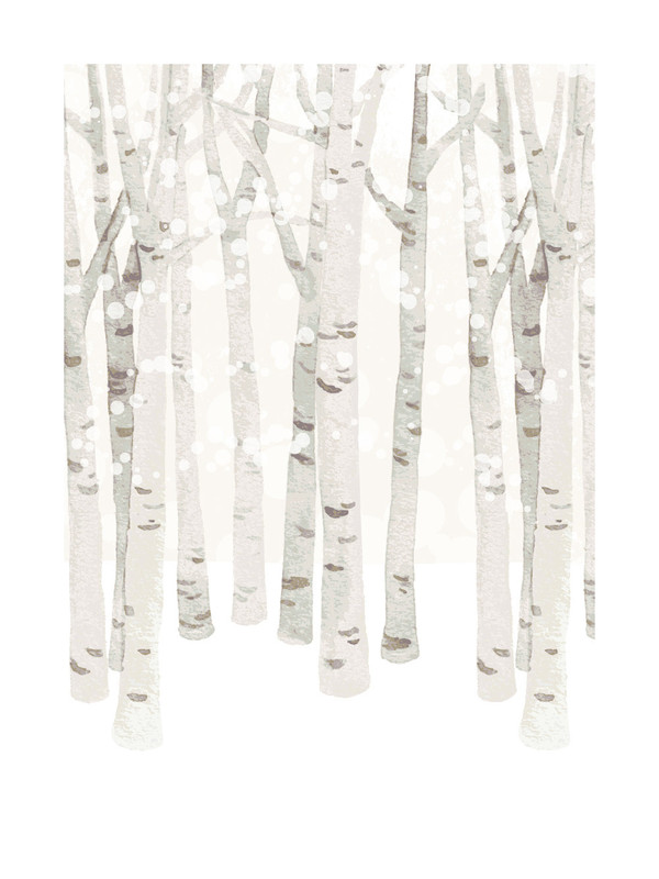 Birch Woods in Winter by Four Wet Feet Studio
