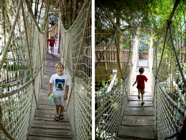 Walking across the rope bridge in the Green Pyramid