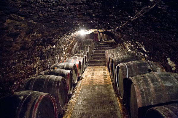 The barrels of wine inside of the pince