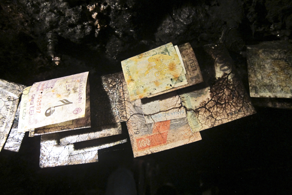 Mold growing on paper money from around the world
