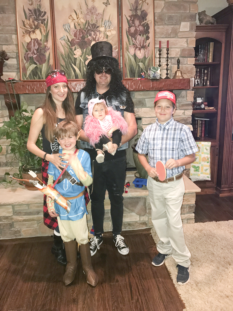 Our cute little family. Axl Rose, Slash, Link from Zelda Breath of the Wild, baby flamingo and Forest Gump